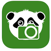 Shoots & Leaves  logo
