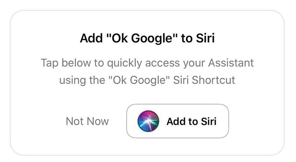 Hey Siri Google Assistant 1000x548 Il est maintenant possible de dire « Hey Siri, Ok Google » pour lancer Google Assistant sur iPhone