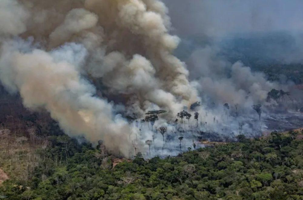 Amazonie Foret Feu 1000x660 Incendies en Amazonie : Tim Cook déclare quApple fera un don