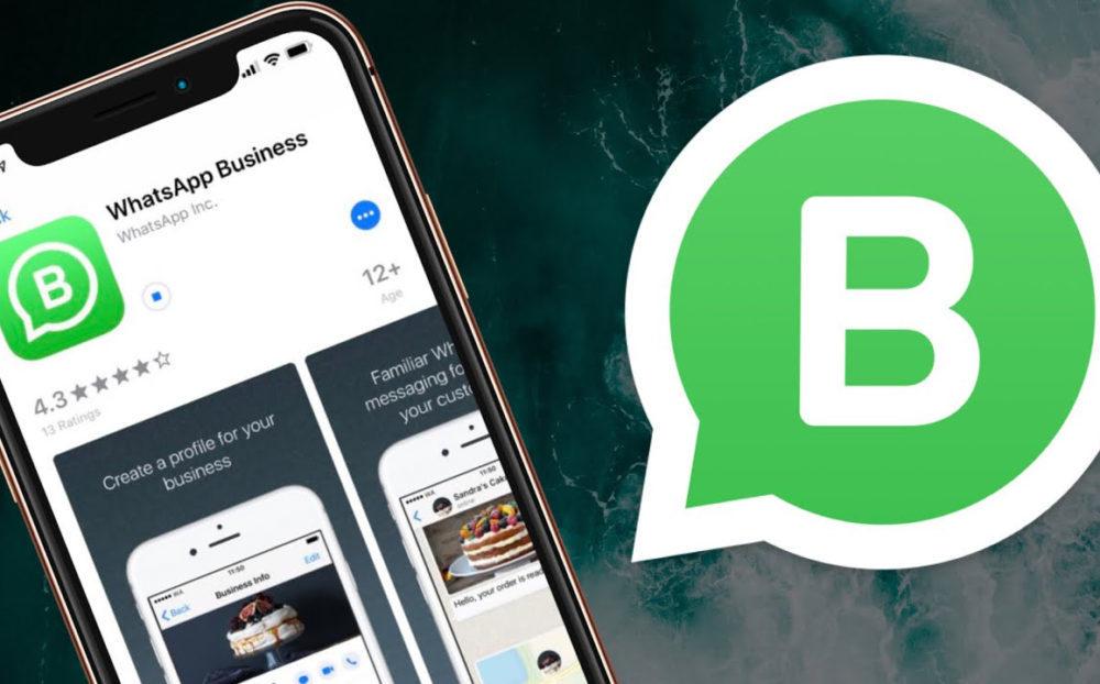 WhatsApp Business iPhone 1000x622 WhatsApp à jour : appels en attente, le contrôle de qui peut vous ajouter à des groupes...